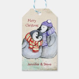 Niedliche Penguins in den Winter-Schals und den Geschenkanhänger