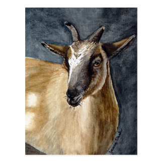 Niedliche Pygmäenziegewatercolor-Grafik Postkarte