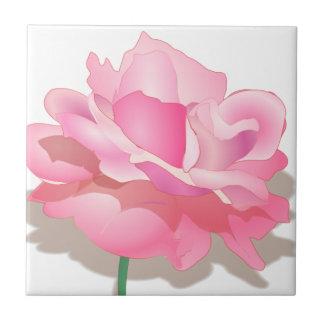 Niedliche rosa Rose in der vollen Blüte - Fliese