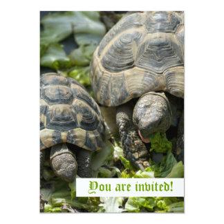 Niedliche Schildkröte-Gewohnheits-Einladungen 12,7 X 17,8 Cm Einladungskarte