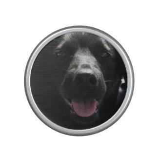 Niedliche schwarzer Hundegesicht Bumpster Lautspercher