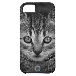 Niedliche Schwarzweiss-Katze, iPhone SE/5/5s Fall iPhone 5 Schutzhülle