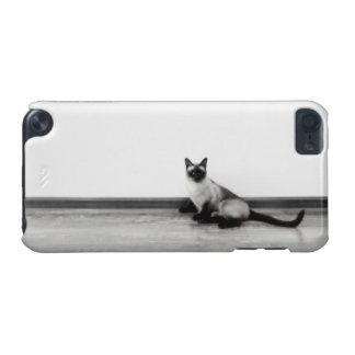 NIEDLICHE siamesische Katzen-Porträt-Fotografie iPod Touch 5G Hülle