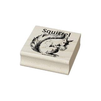 Niedliche Skizze eines Eichhörnchens mit Nuss Gummistempel