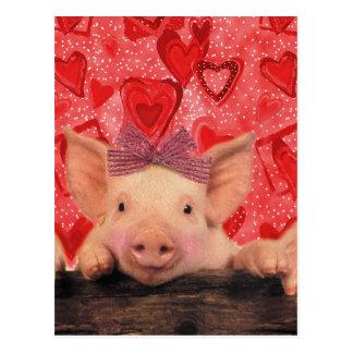 Niedliche Valentineschweine Postkarte