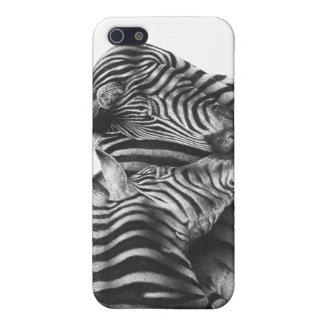 Niedliche Zebras iPhone 5 Schutzhüllen