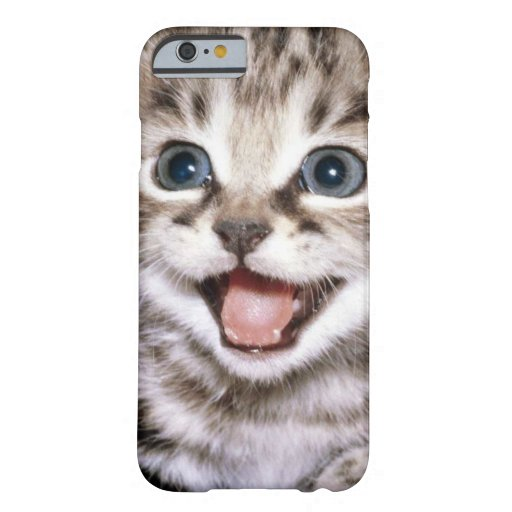Niedlicher aufgeregter Kätzchen iPhone 6 Fall Barely There iPhone 6 Hülle
