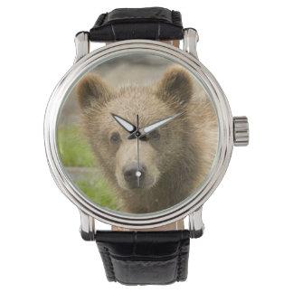 Niedlicher Bär Uhren