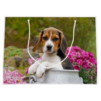 Niedlicher Beagle-Hundewelpe in einer Milchkanne - Große Geschenktüte