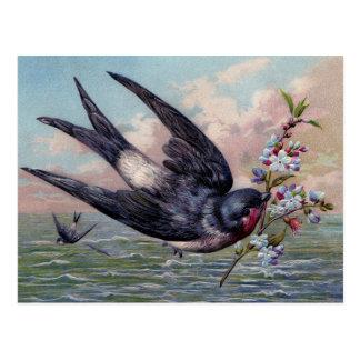 Niedlicher blaues Rot-Schwalben-Vogel und hübsche Postkarte