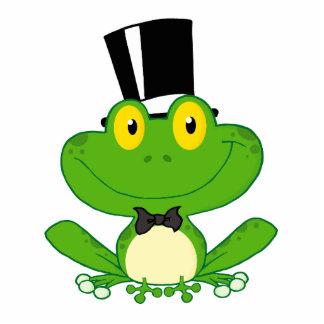 niedlicher Bräutigam-Cartoon-Froschcharakter Fotostatue