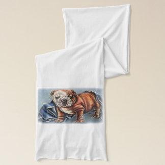 Niedlicher Bulldoggen-Welpe mit dem umfassenden Schal