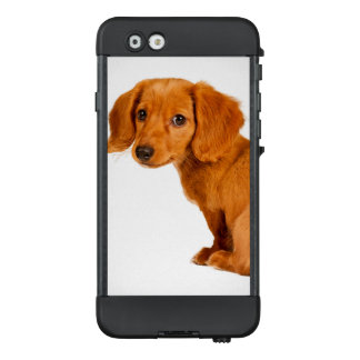 Niedlicher Dackel-Welpen-Hund LifeProof NÜÜD iPhone 6 Hülle