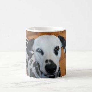 Niedlicher Dalmatiner Kaffeetasse