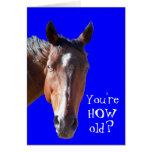 Niedlicher erhaltener älterer Geburtstags-PferdeWe Grußkarte