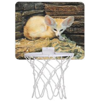Niedlicher fennec Fuchs Mini Basketball Netz