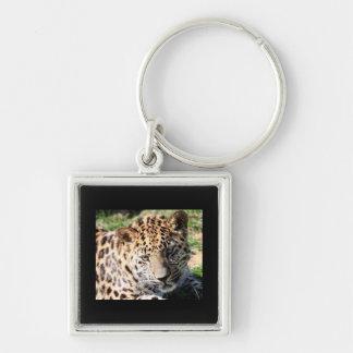 Niedlicher Fotoschlüsselring der Silberfarbener Quadratischer Schlüsselanhänger