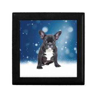 Niedlicher französische Bulldoggen-Schnee hat Erinnerungskiste