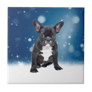 Niedlicher französische Bulldoggen-Schnee hat Fliese