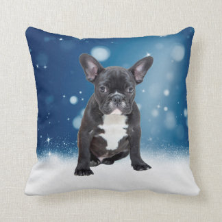 Niedlicher französische Bulldoggen-Schnee hat Kissen