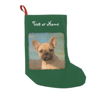 Niedlicher französische Bulldoggen-Welpe - Kleiner Weihnachtsstrumpf