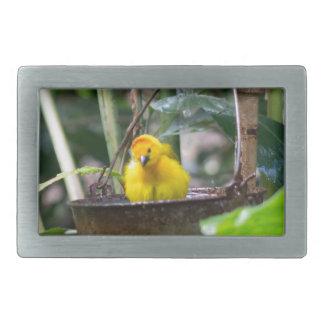 Niedlicher, gelber Vogel, der in einem Eimer badet Rechteckige Gürtelschnalle