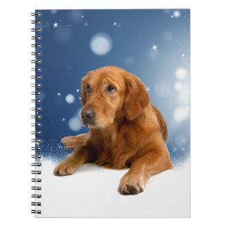 Niedlicher goldener Retriever-Hund, der in den Notizblock