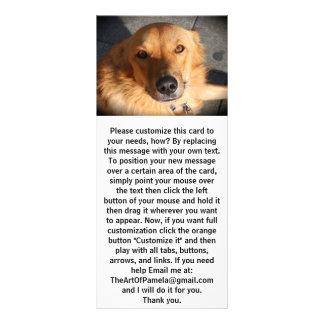 Niedlicher goldener Retriever-Hund Werbekarte