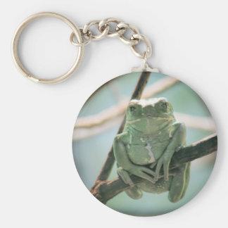 Niedlicher grüner Frosch, der auf einer Schlüsselanhänger