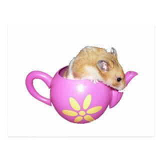 Niedlicher Hamster in einem rosa Teekanne-Foto Postkarte