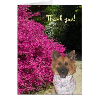 Niedlicher Hund danken Ihnen zu kardieren Grußkarte