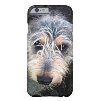 Niedlicher Hund, der oben iphone 6 Fall schaut Barely There iPhone 6 Hülle