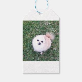 Niedlicher Hund Geschenkanhänger