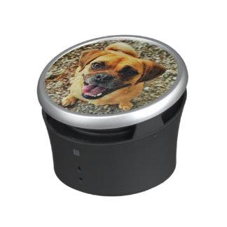 Niedlicher Hund Lautspercher