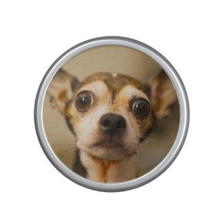Niedlicher Hundenahaufnahme bluetooth Lautsprecher