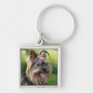 Niedlicher Hundeschlüsselchain 7 Silberfarbener Quadratischer Schlüsselanhänger