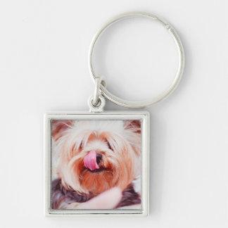 Niedlicher Hundeschlüsselchain 8 Silberfarbener Quadratischer Schlüsselanhänger