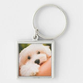 Niedlicher Hundeschlüsselchain 9 Silberfarbener Quadratischer Schlüsselanhänger