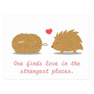 Niedlicher Igel findet seine wahre Liebe in einer Postkarte