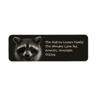 Niedlicher junger Raccoon-GesichtsmaskeStare