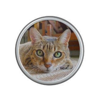 Niedlicher Katze bluetooth Lautsprecher