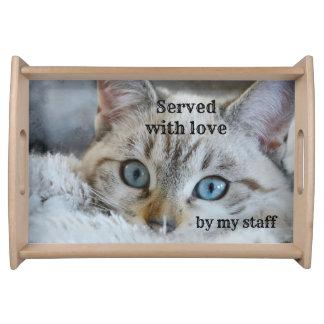 Niedlicher Katzen-Liebhaber-personalisiertes Tablett