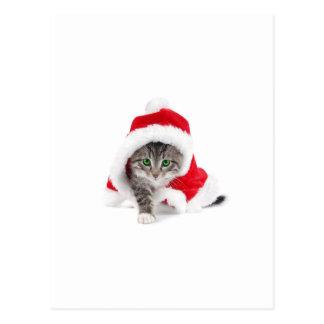 Niedlicher Kitty! Postkarte