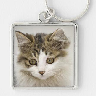Niedlicher Kitty Silberfarbener Quadratischer Schlüsselanhänger