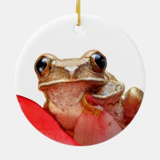 Niedlicher kleiner Frosch-runde Verzierung Keramik Ornament