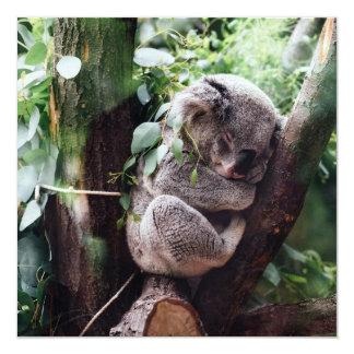 Niedlicher Koala-Bär, der in einem Baum sich Karte