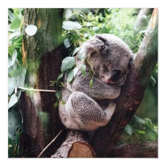Niedlicher Koala-Bär, der in einem Baum sich Magnetische Karte