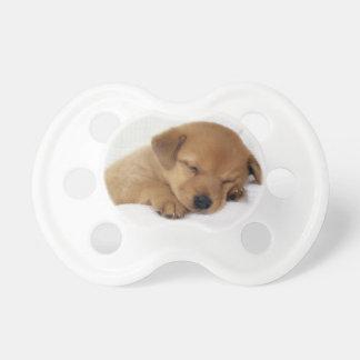 Niedlicher Labrador-Welpe Schnuller