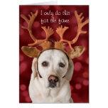 Niedlicher Labradorhund mit den Geweihen Grußkarte