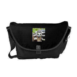Niedlicher Lemur Stripey Schwanz Kuriertasche